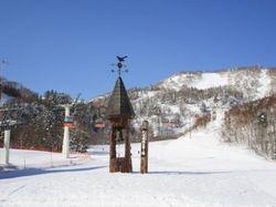 札幌国際スキー場(札幌経済新聞)