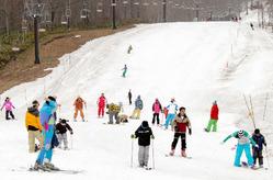 今季最後の滑りを楽しむ人たち=たんばらスキーパーク提供