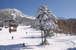 1993年には1860万人もいたスキー人口も、今ではその半分にも満たない720万人ほどだという