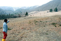 コナラやクヌギの苗木を植え森林化される第2ゲレンデ(高島市・マキノスキー場)