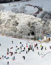 <初滑り>最南端の五ケ瀬ハイランドスキー場 オープン 宮崎・五ケ瀬町