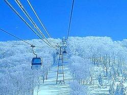 阿仁スキー場:運営会社が北秋田市に譲渡へ 津谷市長、受け入れ方針 /秋田