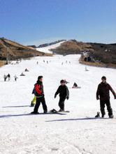 山頂から1500メートルを一気に下ってくる若者の=九重町の九重森林公園スキー場