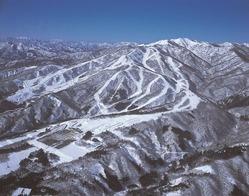 マックアース 日本のスキー場再生を目指す