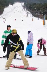久しぶりの雪の感触を楽しむ若者ら=スノーリゾート猫山