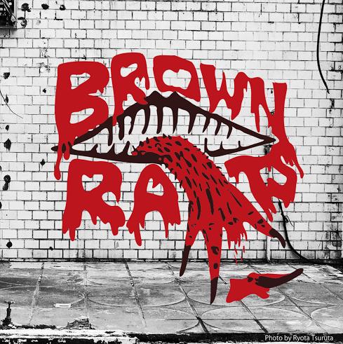 brown-rats3