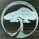 Arbor Snowboards_logo
