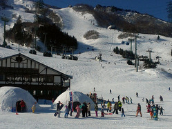 「乳幼児でも安心して楽しめる!」失敗しないスキー場選びのポイント3つ