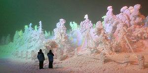 ライトアップされ闇の中に浮かび上がった樹氷=山形市・蔵王ロープウェイ地蔵山頂駅付近