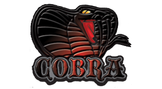 GAME:「Cobra CFW Tools v1.29a」リリース ー PS3 Hack