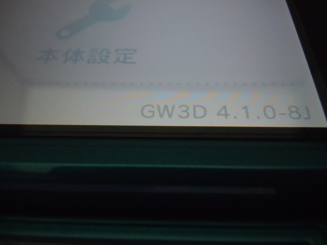 DSCN4415