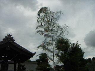 2009-07-18 12:45:41