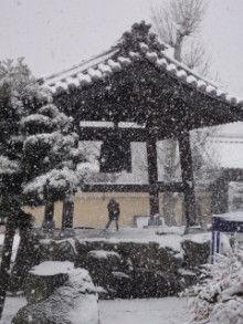 お寺暮らし-DSC05084.jpg