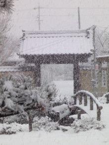 お寺暮らし-DSC05093.jpg