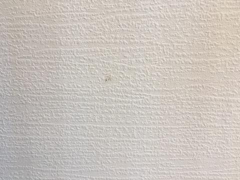 珪藻土クロス(壁紙)の汚れ取り