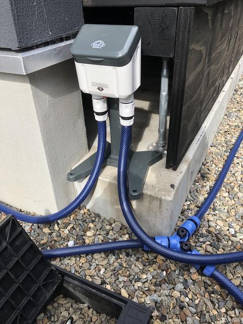 夏のコケを守る -セフティー3 自動水やり器を使ってみて-