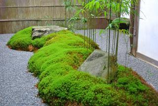苔庭をめざして -新築の庭改造計画-