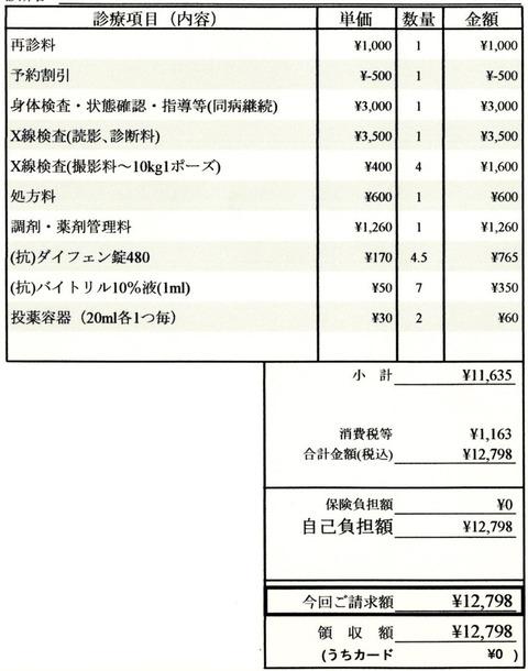 明細書20201202-1