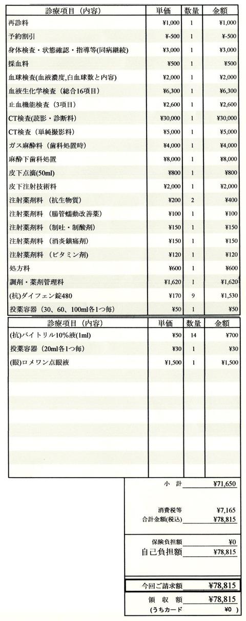 明細書20201208-1