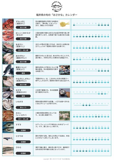福井の秋の旬 アオリイカを買いに行きました -敦賀の相木魚問屋-
