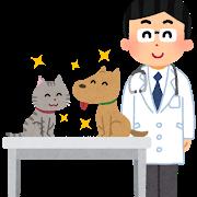 動物病院での指摘 -エサについて-