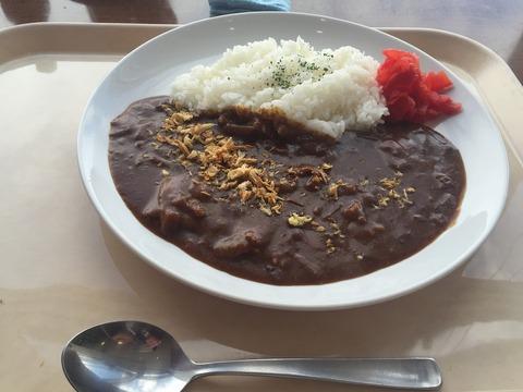 okadama_curry