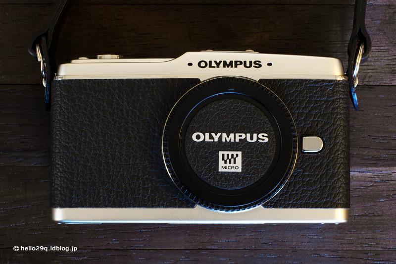 OLYMPUS PEN EP-1