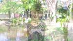 GAZO12576