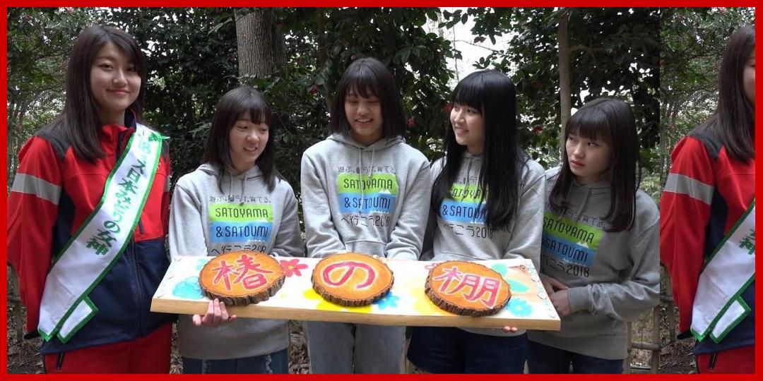 [動画あり]【Part 3】つばきファクトリーが行く!見所満載、春の泉佐野丘陵緑地!