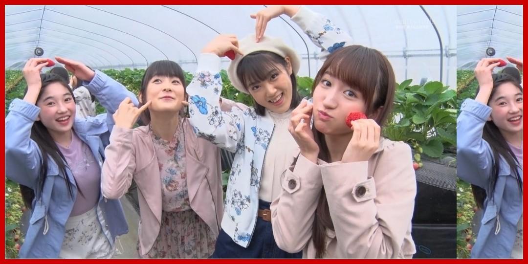 【動画あり】カントリー・ガールズ DVDマガジン Vol.5 CM