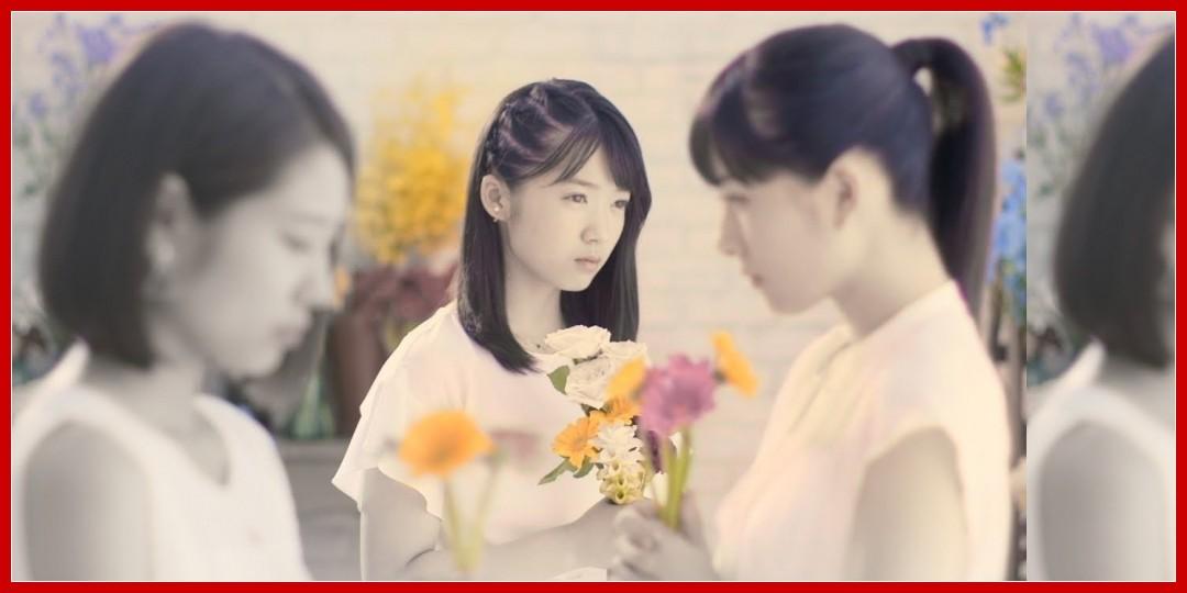 [動画あり]つばきファクトリー『ハナモヨウ』(Camellia Factory[The Flower Pattern])(Promotion Edit)