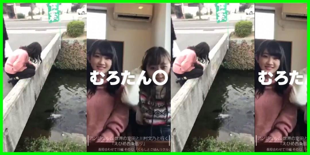 川村文乃<!--zzz川村文乃/zzz-->