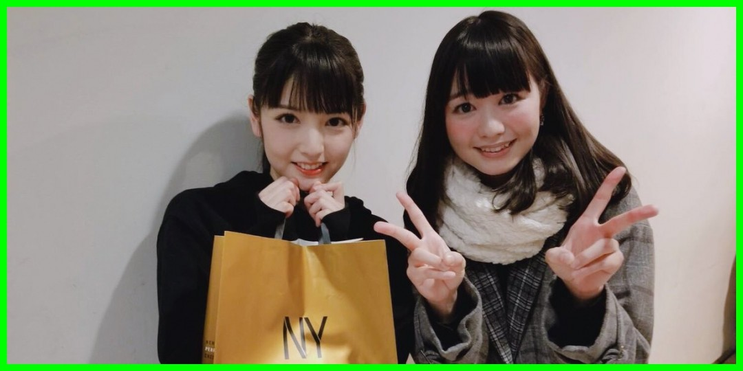 [道重さゆみ/ハロプロbigfan]SAYUMINGLANDOLL ~東京~に行ってきましたby中村千尋さん(2019-01-21)