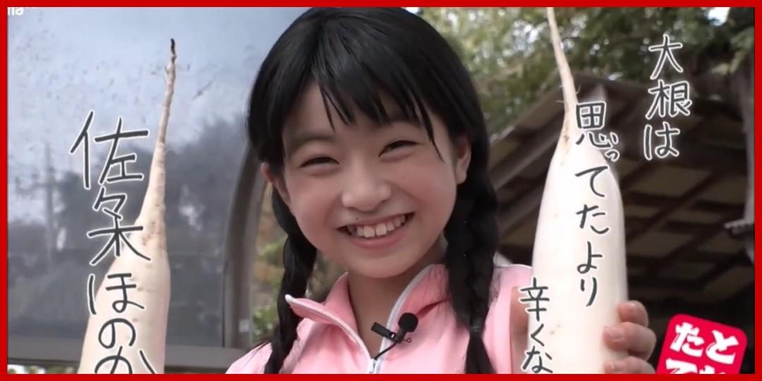 [動画あり][佐々木ほのか]佐々木ほのか アメブロTikTok動画まとめ(11,12月)(2019-01-13)