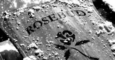 rosebud (1)