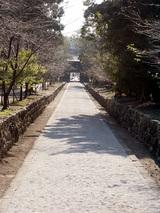 善楽寺 山門からは長い参道がまっすぐに伸びます