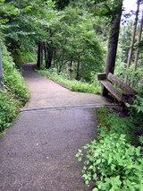 横峰寺へと続く細い山道
