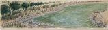 第12回全国「かまぼこ板の絵」展覧会 出品 「清流」
