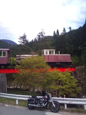 in yumori