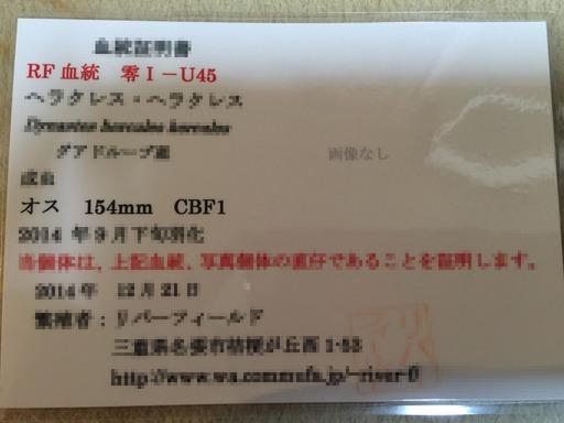 2015-01-28_21-39-35