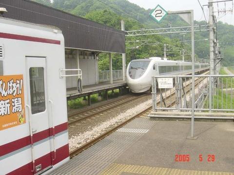 mushigawaosugi_home1_pass_forKanazawa