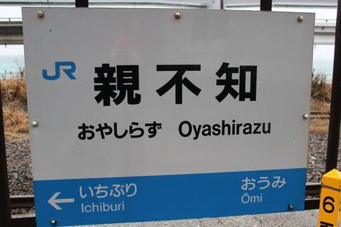 oyashirazu
