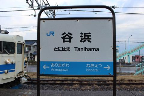 tanihama