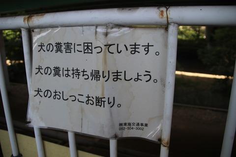 hira_oshikko