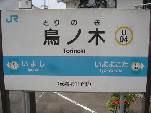 torinoki