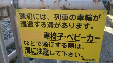 ikegami_info