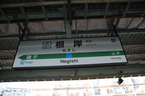negishi