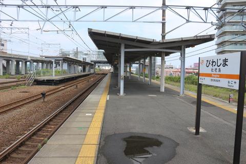 biwajima_konai