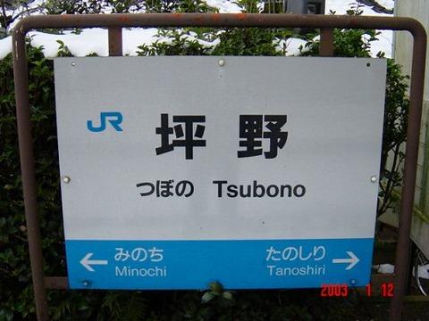 tsubono
