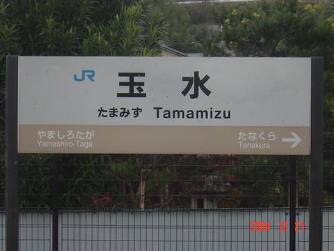 tamamizu